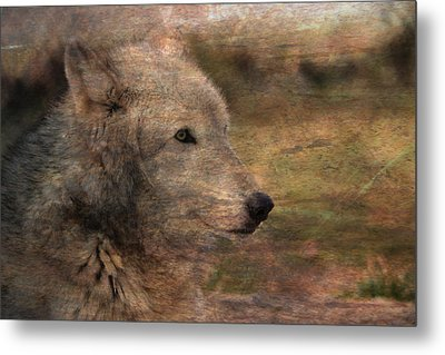 Spirit Of The Wolf Metal Print by Deena Stoddard