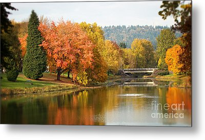 Splash Of Fall Metal Print by Beverly Guilliams