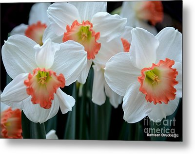 Spring Jonquils Metal Print by Kathleen Struckle
