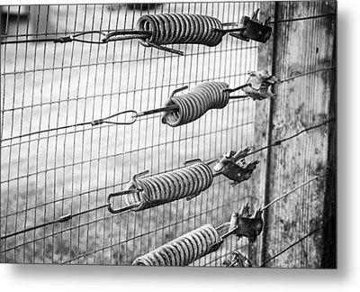 Springs On The Fence Metal Print by Christi Kraft