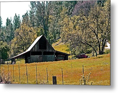 Springtime In Volcano California Metal Print by Joseph Coulombe