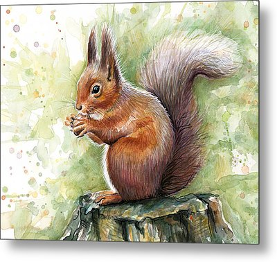 Squirrel Watercolor Art Metal Print by Olga Shvartsur