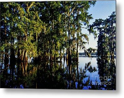 St Martin Parish Lake Martin Cypress Swamp Metal Print by Thomas R Fletcher
