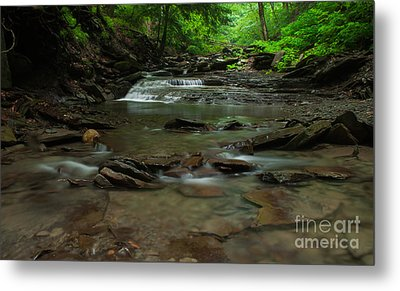 Standing In The Stream Metal Print by Steve Clough