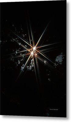 Star Bright Metal Print by Donna Blackhall