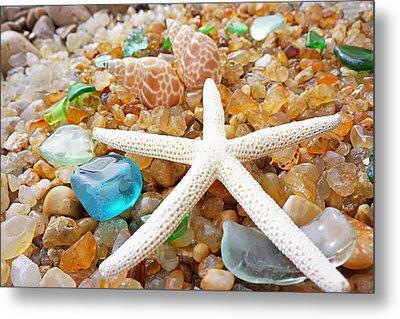 Starfish Art Prints Shells Agates Coastal Beach Metal Print by Baslee Troutman