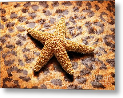 Starfish Enterprise Metal Print by Andee Design