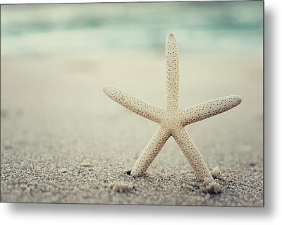 Starfish On Beach Vintage Seaside New Jersey  Metal Print by Terry DeLuco