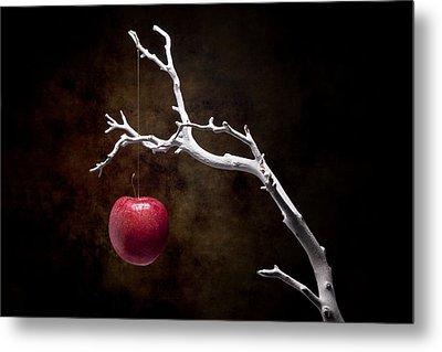 Still Life Apple Tree Metal Print by Tom Mc Nemar