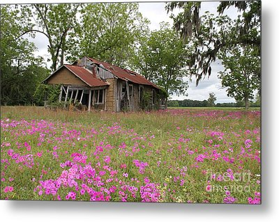 Still Life With Old House Metal Print by Theresa Willingham