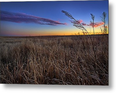 Stillness Metal Print by Thomas Zimmerman