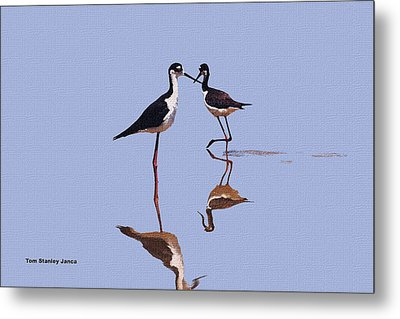 Stilts In The Blue Metal Print by Tom Janca