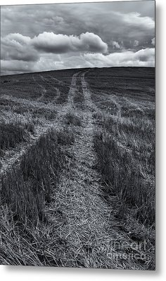 Storm Tracks Metal Print by Mike  Dawson