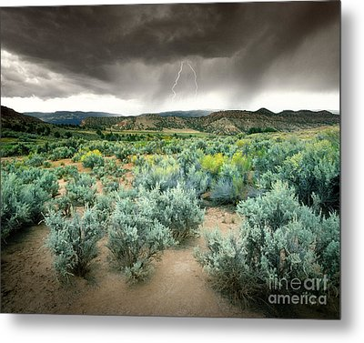 Storms Never Last Metal Print by Edmund Nagele