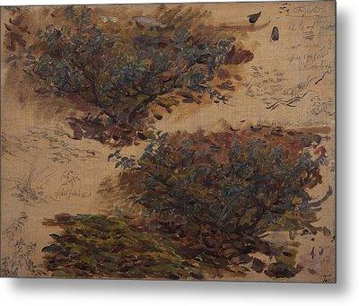 Study Of Trees Metal Print by Henri Duhem
