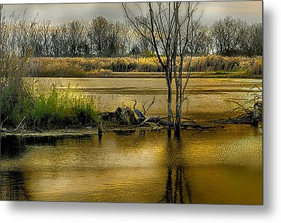 Sublime Banner Part 3 Metal Print by Kimberleigh Ladd