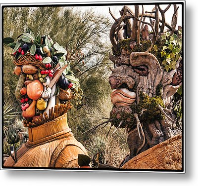 Summer And Winter Metal Print by Diane Wood