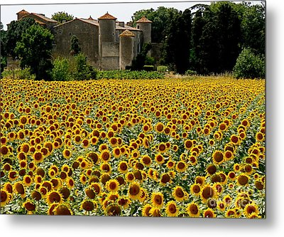 Summer Bliss Metal Print by France  Art