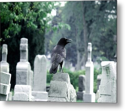Summer Graveyard Metal Print by Gothicrow Images