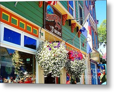 Summer In Crested Butte Metal Print by Trisha Buchanan