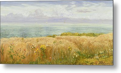 Summer On The Cliffs Metal Print by John Brett