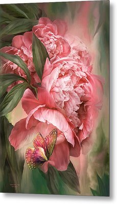 Summer Peony - Melon Metal Print by Carol Cavalaris