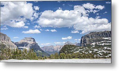 Summer Snow Metal Print by Jon Glaser