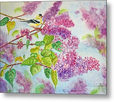 Summertime Arrival II - Goldfinch And Lilacs Metal Print by Kathryn Duncan