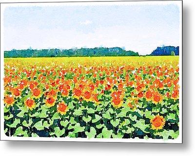 Sun Flower Landscape Metal Print by Yury Malkov