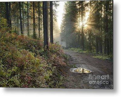 Huckleberry Road Metal Print by Idaho Scenic Images Linda Lantzy