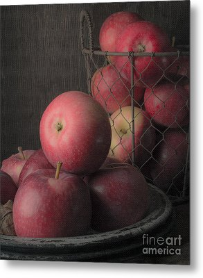Sun Warmed Apples Still Life Standard Sizes Metal Print by Edward Fielding