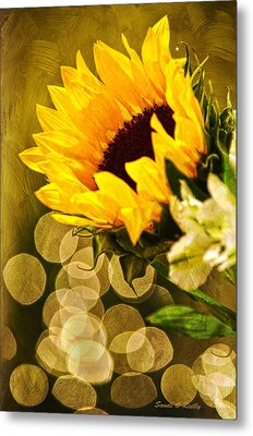Sunflower And The Lights Metal Print by Sandi OReilly