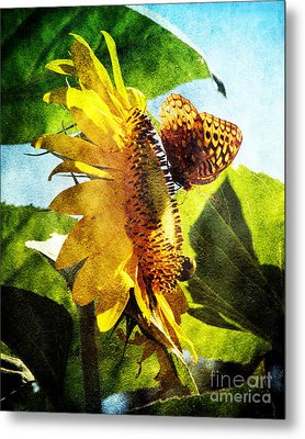 Sunflower Butterfly And Bee Metal Print by Andee Design
