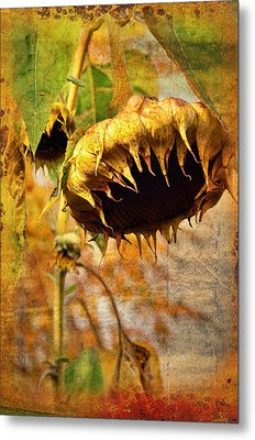 Sunflower Metal Print by Gynt