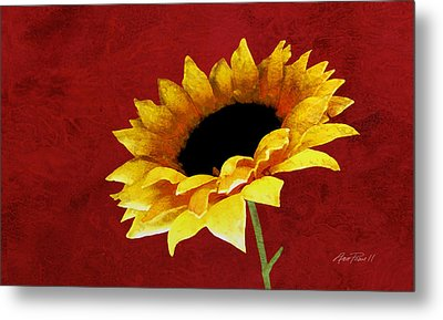 Sunflower On Red Metal Print by Ann Powell