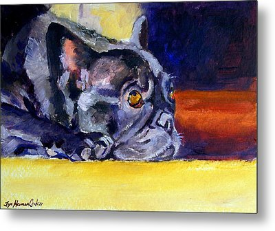 Sunny Patch French Bulldog Metal Print by Lyn Cook