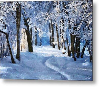 Sunny Snowy Day Metal Print by Gun Legler