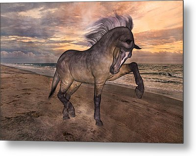 Sunrise Lower Outer Banks Metal Print by Betsy C Knapp