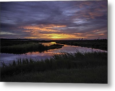 Sunrise On Lake Shelby Metal Print by Michael Thomas