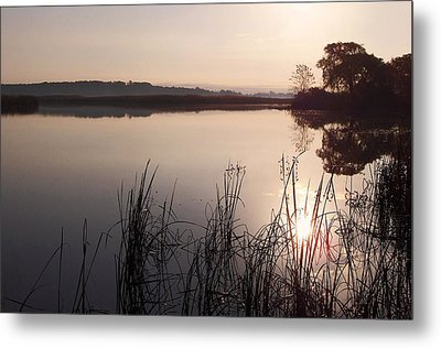 Sunrise On Meadow Metal Print by Kathi Mirto