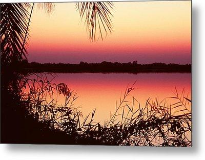 Sunrise On The Okavango Delta Metal Print by Stefan Carpenter