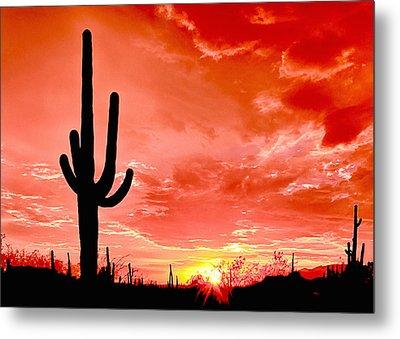 Sunrise Saguaro National Park Metal Print by Bob and Nadine Johnston