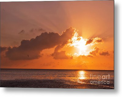 Sunset Metal Print by Angela Doelling AD DESIGN Photo and PhotoArt