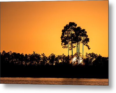 Sunset At Long Pine Key Pond Metal Print by Andres Leon