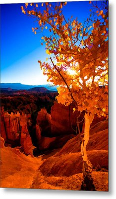 Sunset Fall Metal Print by Chad Dutson