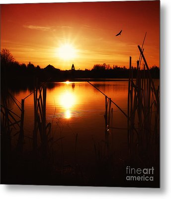 Sunset II Metal Print by Martin Dzurjanik