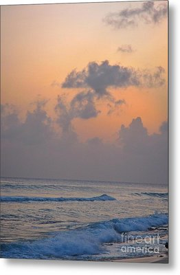Sunset In The Tropics Metal Print by John Malone