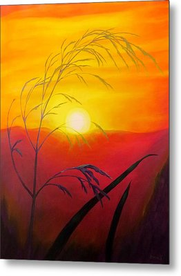 Sunset Through The Grass Metal Print by Zina Stromberg