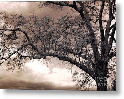 Surreal Fantasy Gothic South Carolina Oak Trees Metal Print by Kathy Fornal
