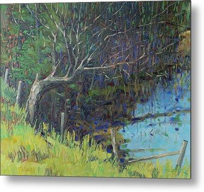 Swamp Tree Metal Print by Phil Chadwick